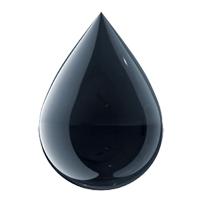 Oil Courses
